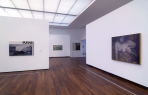 https://www.gerhard-richter.com/en/exhibitions/gerhard-richter-bilder-aus-privaten-sammlungen-354/?tab=installation-views-tabs&installation-photo=1809#tabs