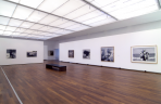 https://www.gerhard-richter.com/en/exhibitions/gerhard-richter-bilder-aus-privaten-sammlungen-354/?tab=installation-views-tabs&installation-photo=1811#tabs