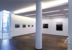 https://www.gerhard-richter.com/en/exhibitions/gerhard-richter-bilder-aus-privaten-sammlungen-354/?tab=installation-views-tabs&installation-photo=1816#tabs