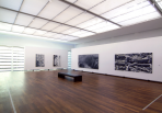 https://www.gerhard-richter.com/en/exhibitions/gerhard-richter-bilder-aus-privaten-sammlungen-354/?tab=installation-views-tabs&installation-photo=1825