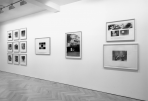 https://www.gerhard-richter.com/en/exhibitions/gerhard-richter-the-complete-editions-727/?tab=installation-views-tabs&installation-photo=1897