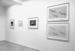 https://www.gerhard-richter.com/en/exhibitions/gerhard-richter-the-complete-editions-727/?tab=installation-views-tabs&installation-photo=1904