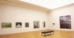 https://www.gerhard-richter.com/en/exhibitions/wiedereroffnung-des-albertinums-in-dresden-977/?tab=installation-views-tabs&installation-photo=1943#tabs