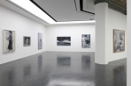https://www.gerhard-richter.com/en/exhibitions/gerhard-richter-bilder-einer-epoche-984/?tab=installation-views-tabs&installation-photo=1962#tabs