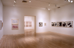 https://www.gerhard-richter.com/en/exhibitions/gerhard-richter-in-dallas-collections-62/?tab=installation-views-tabs&installation-photo=9702#tabs