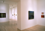 https://www.gerhard-richter.com/en/exhibitions/gerhard-richter-in-dallas-collections-62/?tab=installation-views-tabs&installation-photo=9712#tabs