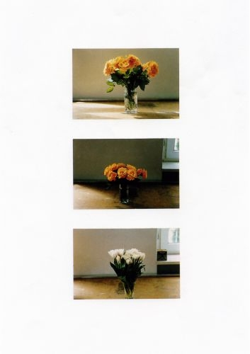 stilleben blumen 533 kunst gerhard richter. Black Bedroom Furniture Sets. Home Design Ideas
