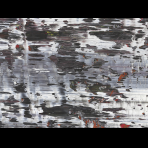 https://www.gerhard-richter.com/en/exhibitions/beauty-now-die-schonheit-in-der-kunst-am-ende-des-20-ja-1133/structure-2-7781/?&tab=photos-tabs-artwork&painting-photo=10#tabs