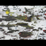 https://www.gerhard-richter.com/en/exhibitions/beauty-now-die-schonheit-in-der-kunst-am-ende-des-20-ja-1133/structure-2-7781/?&tab=photos-tabs-artwork&painting-photo=14#tabs