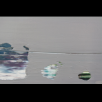 https://www.gerhard-richter.com/en/exhibitions/gerhard-richter-22/abstract-painting-grey-10638/?&tab=photos-tabs-artwork&painting-photo=31#tabs