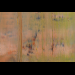 https://www.gerhard-richter.com/en/exhibitions/gerhard-richter-painting-as-mirror-26/abstract-painting-10676/?&tab=photos-tabs-artwork&painting-photo=762#tabs